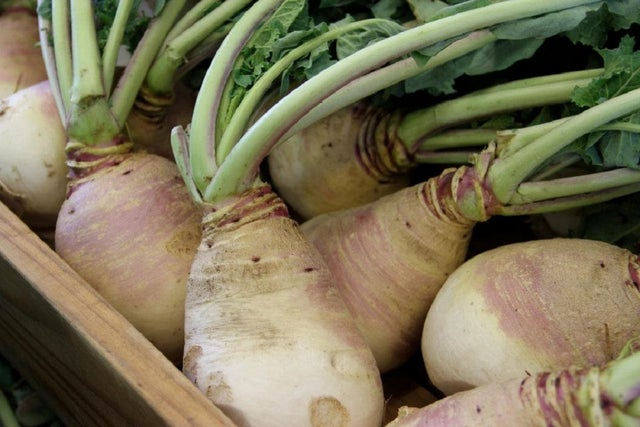 Ask the Gardener: A local turnip that is turning heads